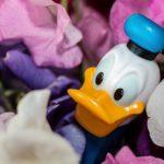 donald-duck-973226_1920